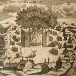 """""""Romuvos"""" kelias: nuo kraštotyros klubo iki senovės baltų religinės bendrijos"""