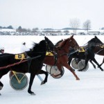 Sartų lenktynėse – stipriausi šalies žirgai