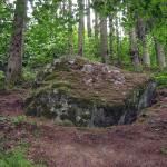 Akmuo kaip bendruomenės kultūros centro simbolis šventvietėse (alkvietėse)(3)