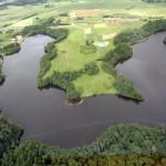 Seime įsiliepsnoja karas dėl miškų