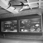 Kaip Jūrų muziejus radosi: nuo nendrių iki odų (2)