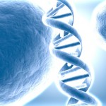 DNR informacija teleportuojama