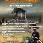 """XII-XIII a. Senovės baltų amatų ir karybos festivalis """"KARO ŽIRGAS"""""""