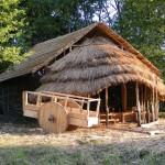 Lietuvos senoji kultūra ir baltų gentys