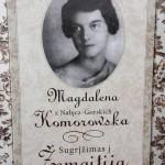 """""""Strateginių partnerių"""" žingsniai, įteisinus lenkišką raidyną Lietuvoje"""