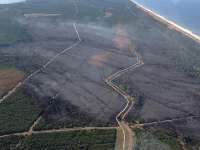 Dariaus Jasaičio nuotr. / Kuršių nerija po gaisro Skaitykite daugiau: http://www.15min.lt/naujiena/aktualu/lietuva/is-oro-neringos-gaisraviete-apziureje-ugniagesiai-neteke-amo-draustinis-lyg-po-karo-56-422409#ixzz301TqL5Nc Follow us: @15minlt on Twitter | 15min on Facebook