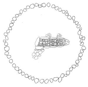 Antkapinis paminklas – akmenų ratas. Požemių Saulė. Dievo akis. Iš: M. Gimbutienė, Baltai priešistoriniais laikais, V., 1985. Arūno Kazio Kyno piešinys