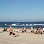 Nemokami Jogos užsiėmimai Nidos ir Juodkrantės paplūdimiuose