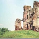 Ar 1009 metais Lietuva buvo laukinis kraštas? (1)