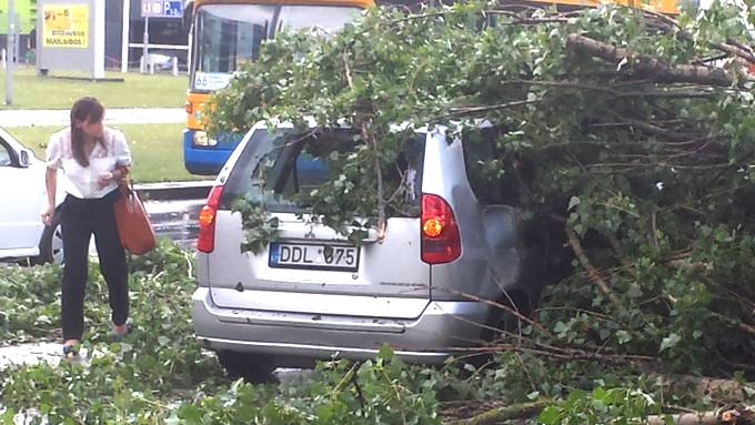 Konstantin Balakin nuotr. / Žirmūnuose medis prispaudė automobilį