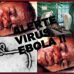 Mirtinas Ebolos virusas keliauja Europos link: kas laukia Lietuvos?