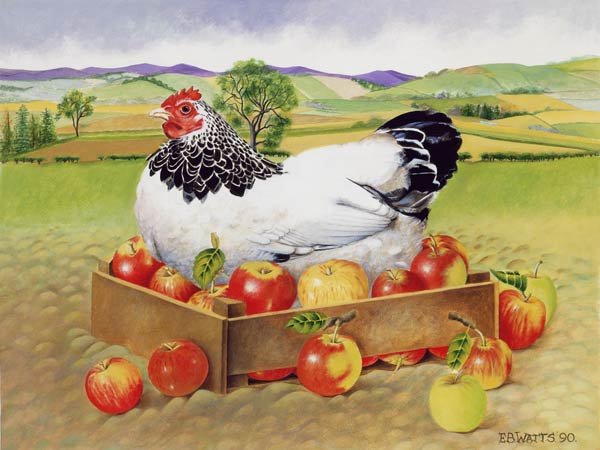 "E. B. Watts ""Višta obuolių dėžėje"""