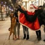 Kalėdinis fotoeksperimentas Vilniuje