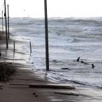 Netekome dalies paplūdimio, padėkime sutvarkyti