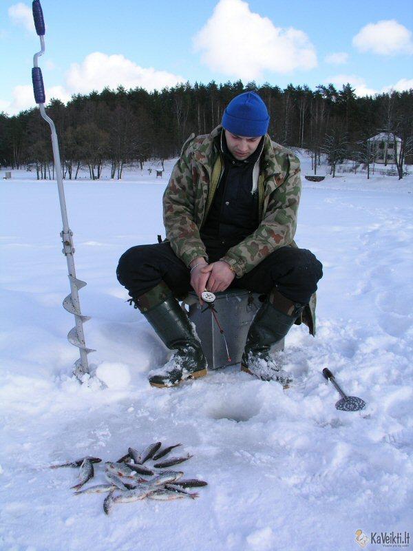 Žuvys žiemą - poledinė žvejyba