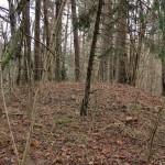 Atrastas nežinomas piliakalnis Neries regioniniame parke