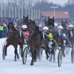 """Dusetų hipodrome vėl žirgų tradicinės lenktynės """"Sartai 2015"""""""