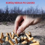 Siekiama uždrausti rūkyti Kuršių nerijos miškuose