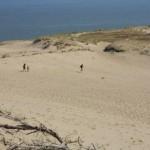 Nidos kopas mindžiojančius poilsiautojus švilpimu gėdins kopų sargai