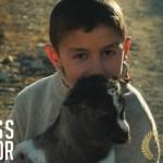 Lietuvių kino juosta Amerikoje pelnė prestižinį apdovanojimą