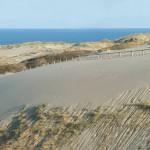 Kuršių nerija – geriausių 2015 metų Europos paplūdimių dešimtuke