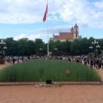 Rugių laukas Vilniaus centre stebina netikėtais garsais