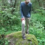 Menininkas bando įminti nuosavame miške atrasto akmens mįslę