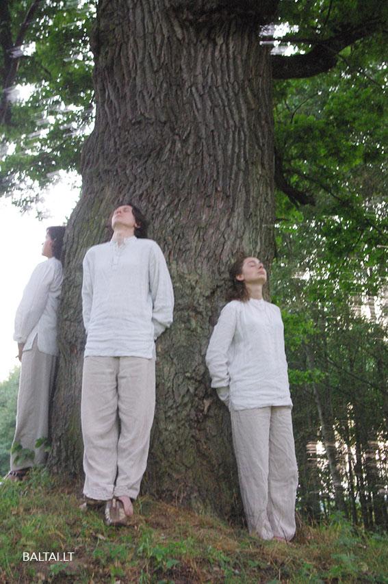 Ažuolo galia derinamos stuburo iškrypimo pažaidos. Specialiu kvėpavimu pašalinamos energetinės neigiamos įtampos, siekiama dermės su medžiu.