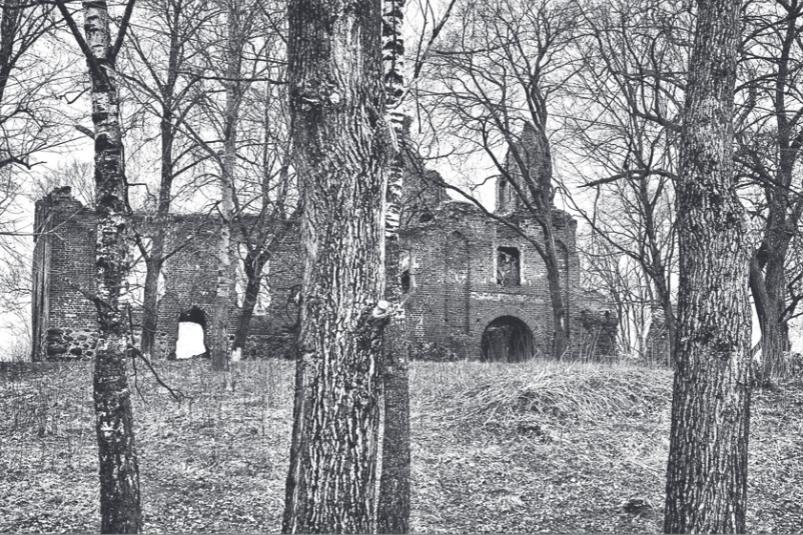 Želvos pilies griuvėsiai. Saalau; Kamenskoje, Černiachovsko r., Rusija