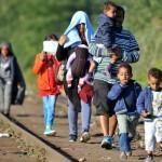 Aiškėja, kaip bus atrenkami į Lietuvą pateksiantys pabėgėliai