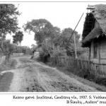 Tradicijos. Šiaurės Lietuvoje sodybų želdiniai