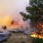 10 metų nuo didžiausio gaisro Kuršių nerijoje: pragariška patirtis ir tebetykantys pavojai