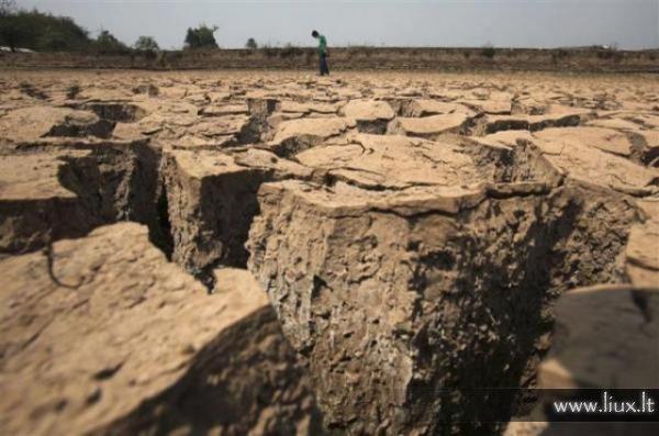 Dėl atšilusio klimato pietvakarių Kinija kenčia nuo sausros.