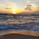 Dėl Baltijos jūros būklės – pavojaus varpai