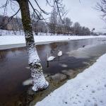 Vilniuje patvino Neris: upė išsiliejo iš krantų