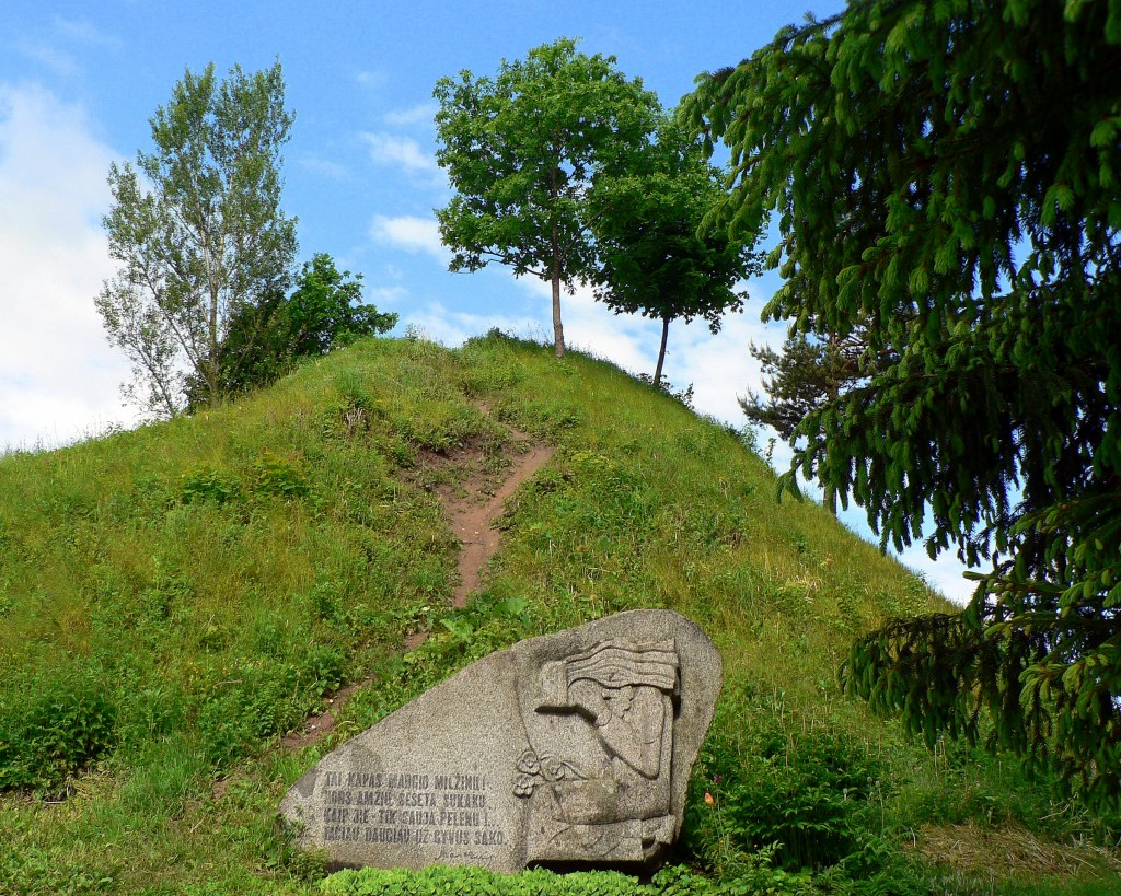 Punios piliakalnis (dar žinomas kaip Margio kalnas) – piliakalnis Alytaus rajone, šalia Punios kaimo, Nemuno dešiniajame krante, prie Punelės upelio žiočių. Įeina į Nemuno kilpų regioninį parką. Foto turistopasaulis.lt