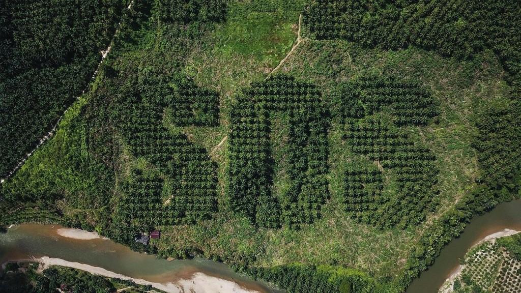 """Ernestas Zacharevičius savo nauju kūriniu Indonezijos Sumatros saloje siekia atkreipti dėmesį į drėgnųjų atogrąžų miškų kirtimo problemą, """"Euronews"""". Vienoje palmių plantacijoje iš viršaus matomas pagalbos prašymas – iš medžių sudėliotas didžiulis užrašas SOS."""