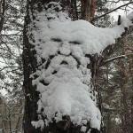 Mitologinio mąstymo aidai žiemos tradicinėse šventėse