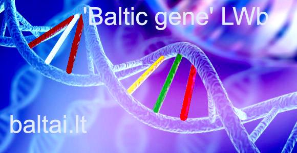 LV ir LT genas LWb