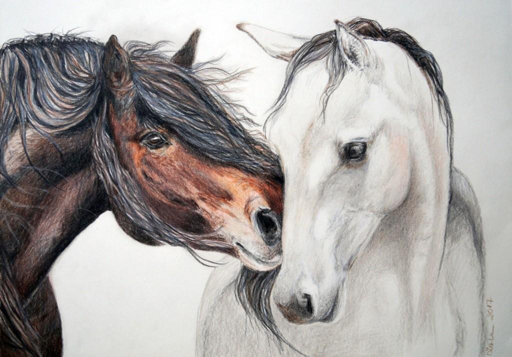 gross_horse-in-love